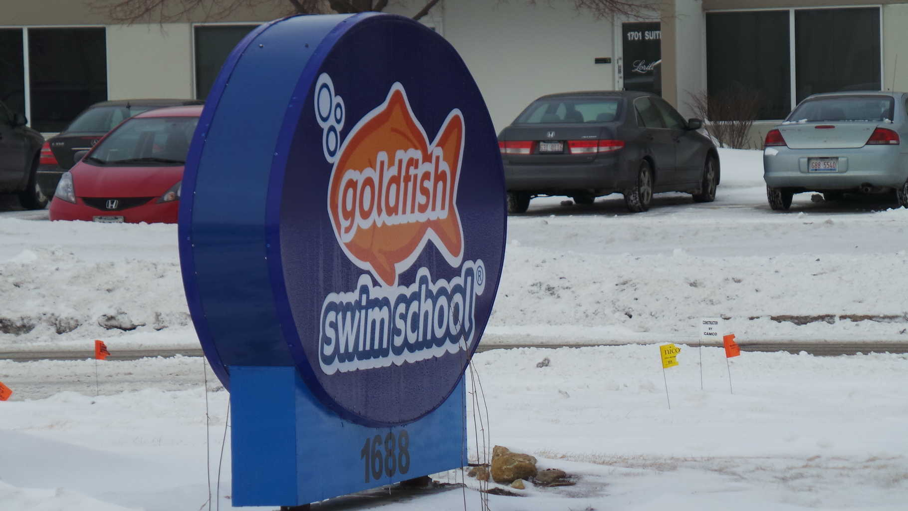 Goldfish Swim School:  The Lessons