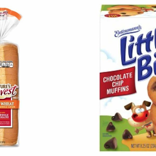 Back-to-school With Little Bites & Natures Harvest – Review and Giveaway!