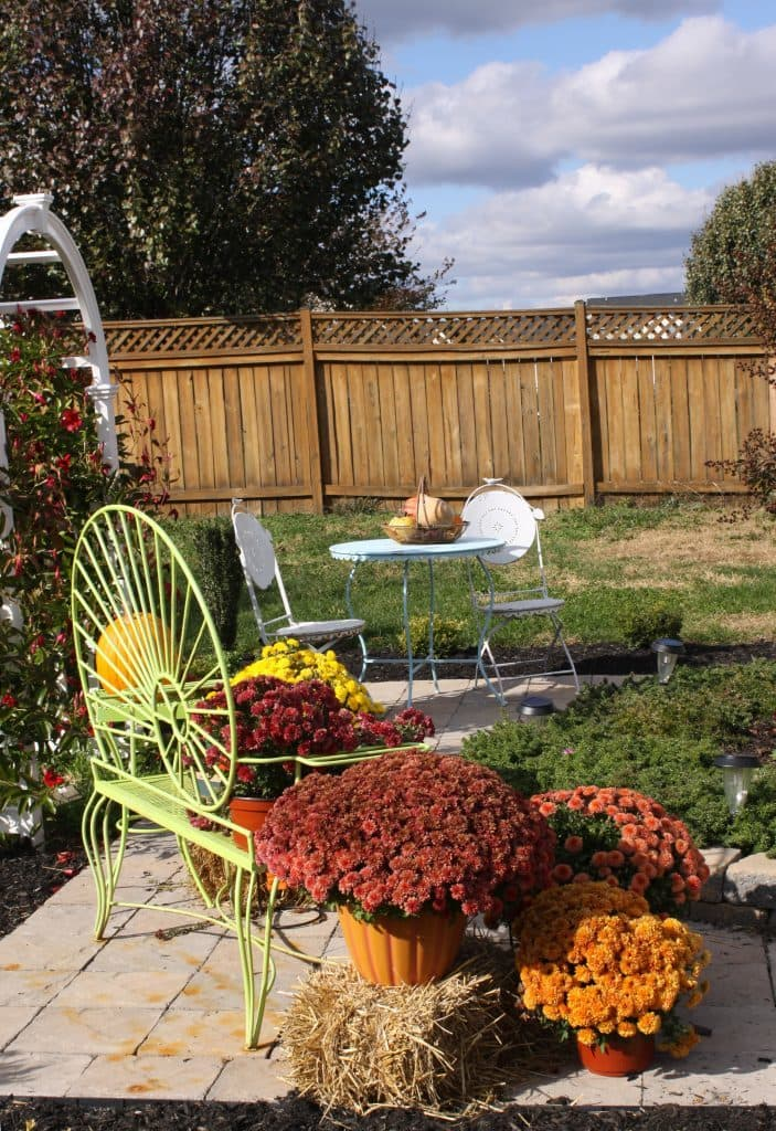 Preparing your garden for fall winter my thoughts ideas and ramblings - Prepare garden winter ...