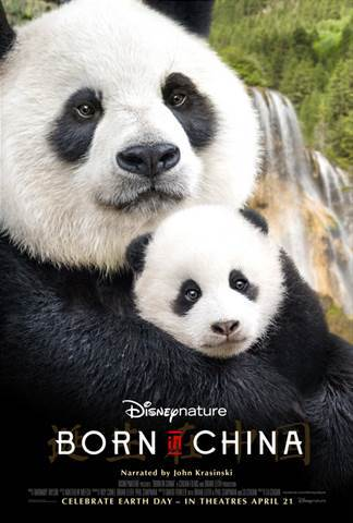 BORN IN CHINA – New Panda Clip & Fun Facts Now Available!!!