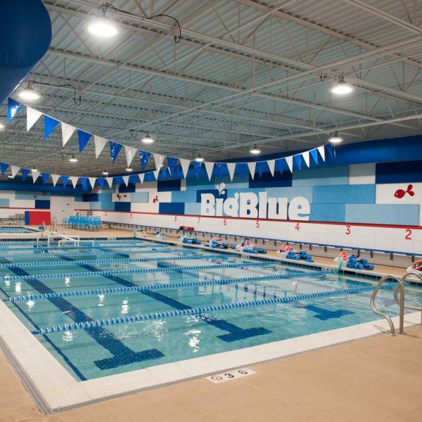 Learn to Swim Like A Fish:  Big Blue Swim School
