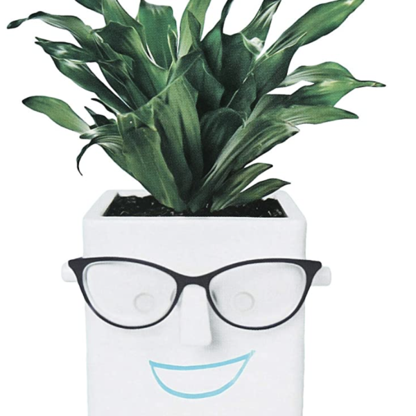 Face Plant:  The Planter With Personality